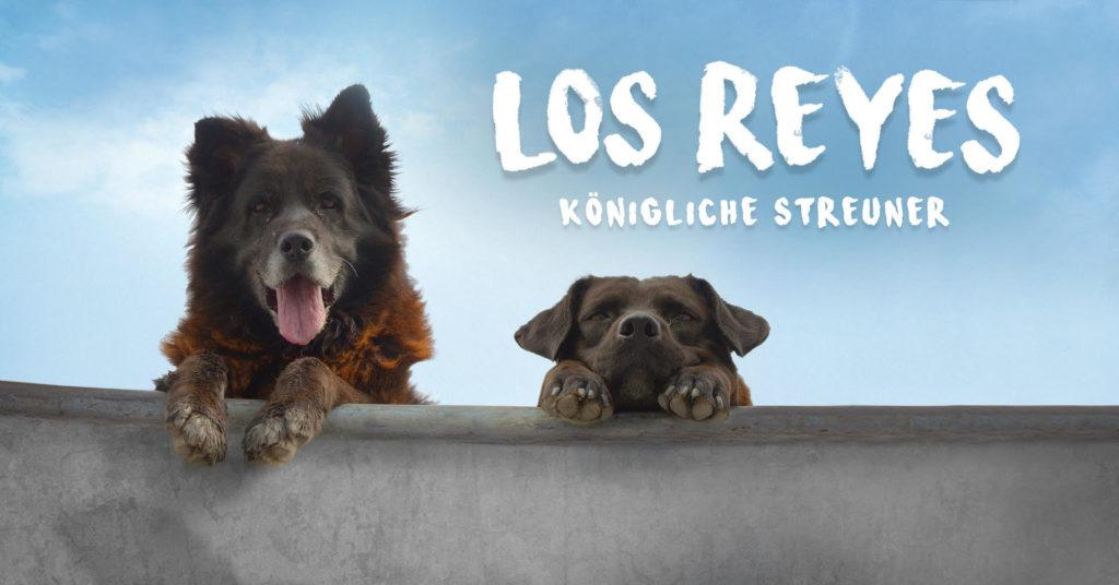 Los Reyes Open Air Kino Alte Münze